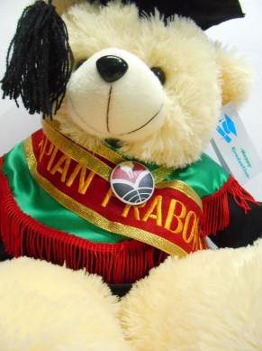boneka wisuda beruang teddy bear 50cm bordir di selempang wisuda 2