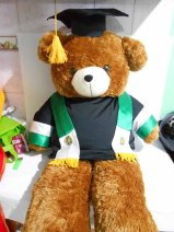 boneka wisuda beruang teddy bear jumbo 120cm bordir di selempang